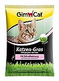GimCat hierba de rápida germinación para gatos - Hierba para gatos de plantación controlada - De rápido cultivo en 5-8 días - 1 bolsa (1 x 100 g)