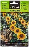Semillas Hortícolas - Girasol para pipas - Batlle
