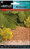 Semillas Aromáticas - Mostaza Blanca - Batlle