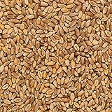 Trigo en grano Ecológico a granel - 500