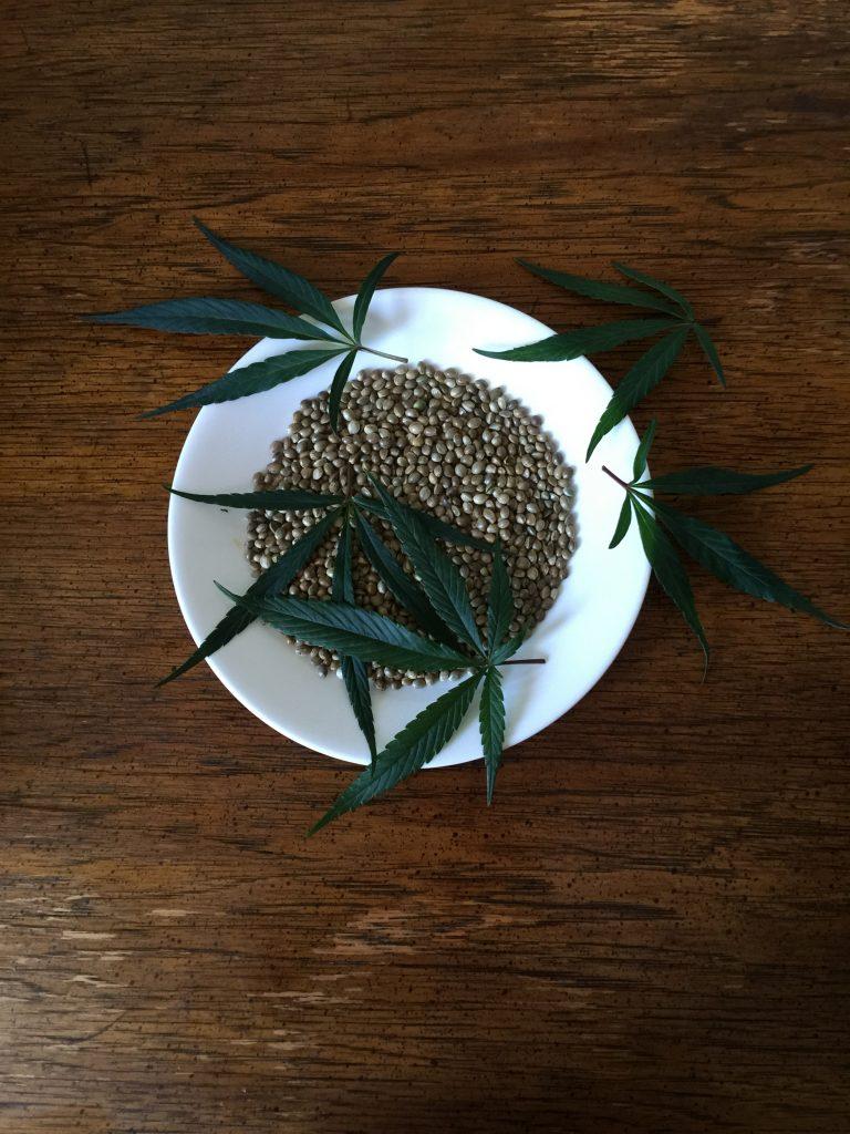 semillas-marihuana-2