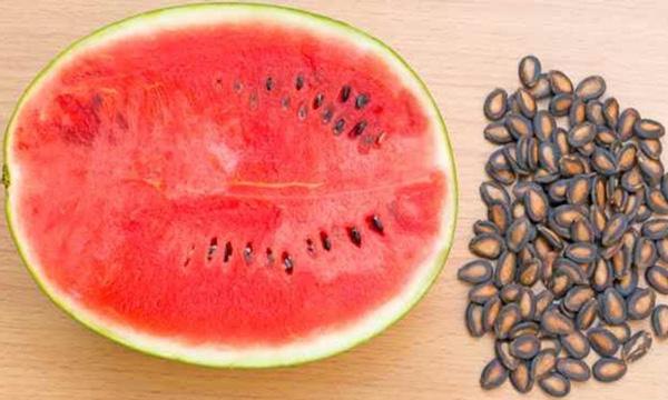semilla de sandía