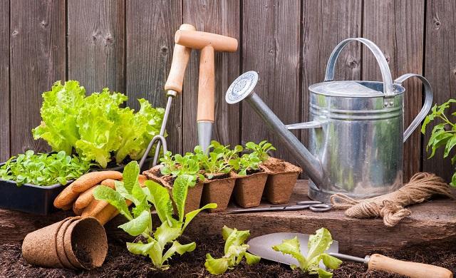 herramientas para trabajar en el huerto